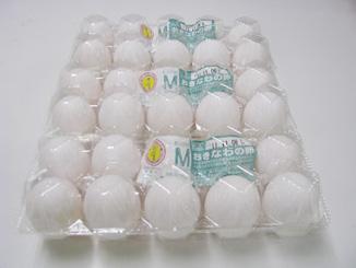 おきなわの卵